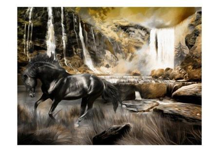 Fototapeta - Czarny rumak i skalisty wodospad