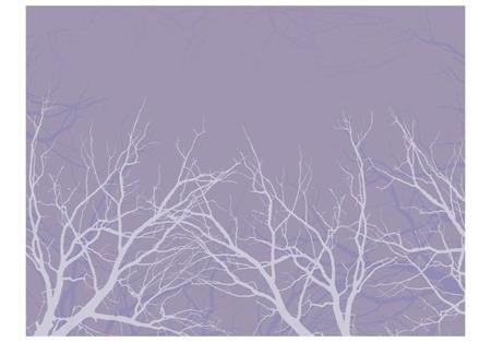 Fototapeta - Iced branches
