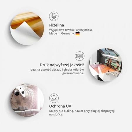 Fototapeta - Płyta winylowa i kolory