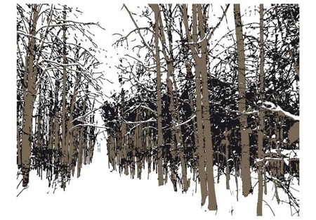 Fototapeta - drzewa - jesień